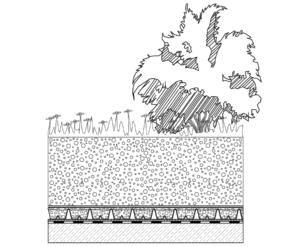 Krovni vrt - Intezivni zeleni krov